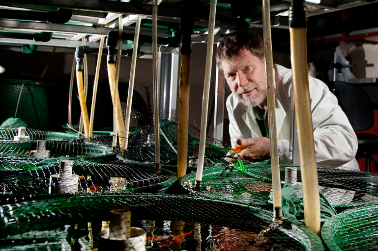 Professor Vance Trudeau overlooking aquariums