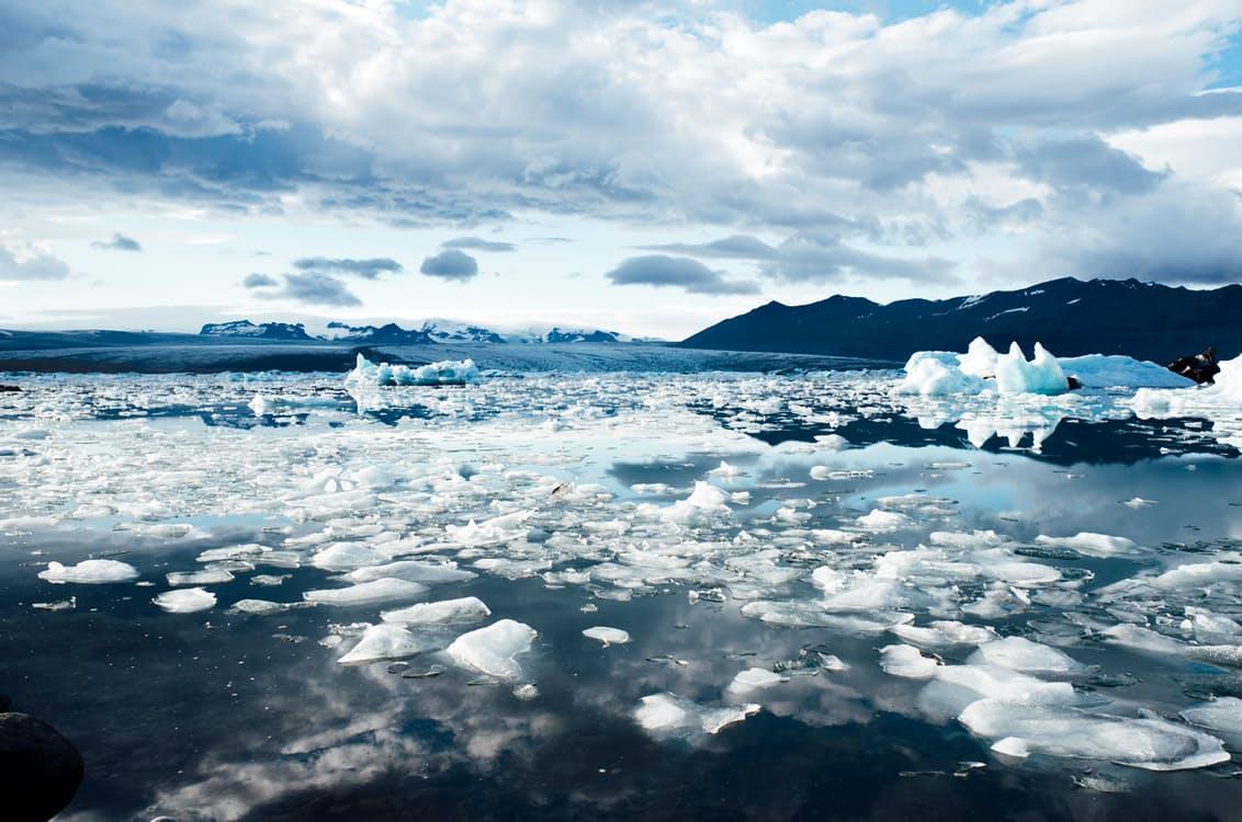 Arctic / Arctique