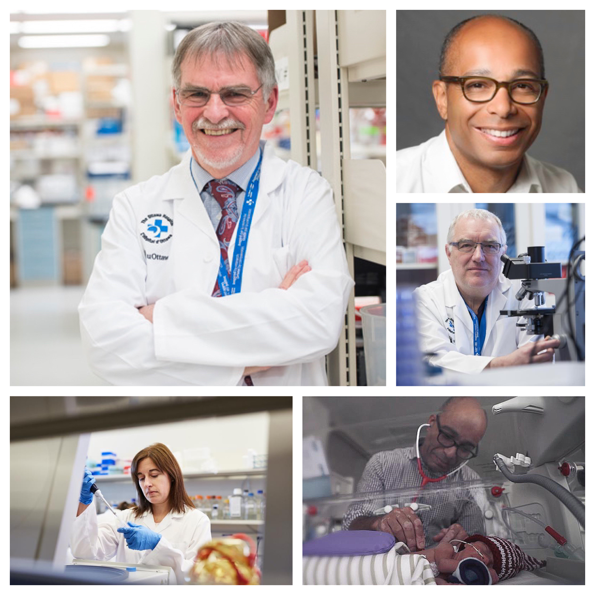 Photo collage of Dr. Stewart and team