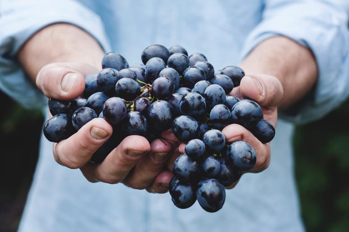 Grapes / Raisins