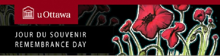 Remembrance day banner, featuring poppies in front of a dark background