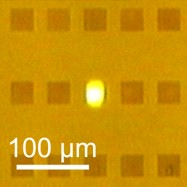 This image shows light emission, a process known as photoluminescence, form solid carbon which has formed on a silver nanostructure, illuminated by green light
