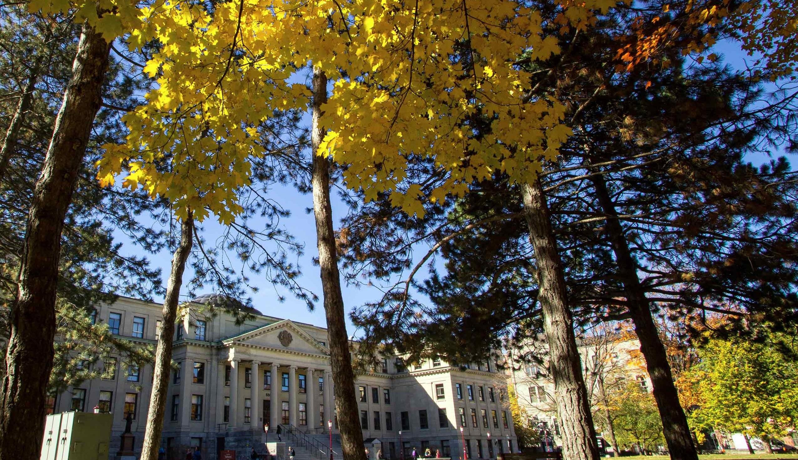 Pavillon Tabaret à automne, des arbres avec feuilles colorées en avant-plan