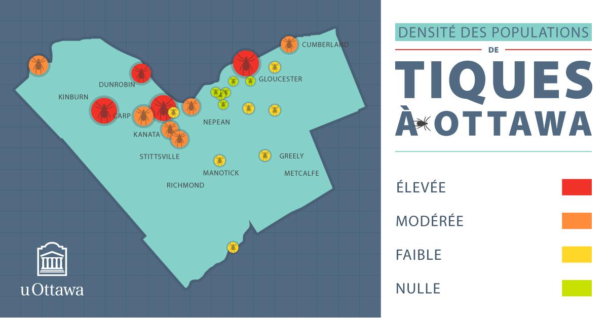 Carte de la densité des populations de tiques à Ottawa